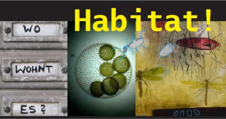 2. Amberger Künstler-Symposium 2014 – Habitat! – Wo wohnt es?